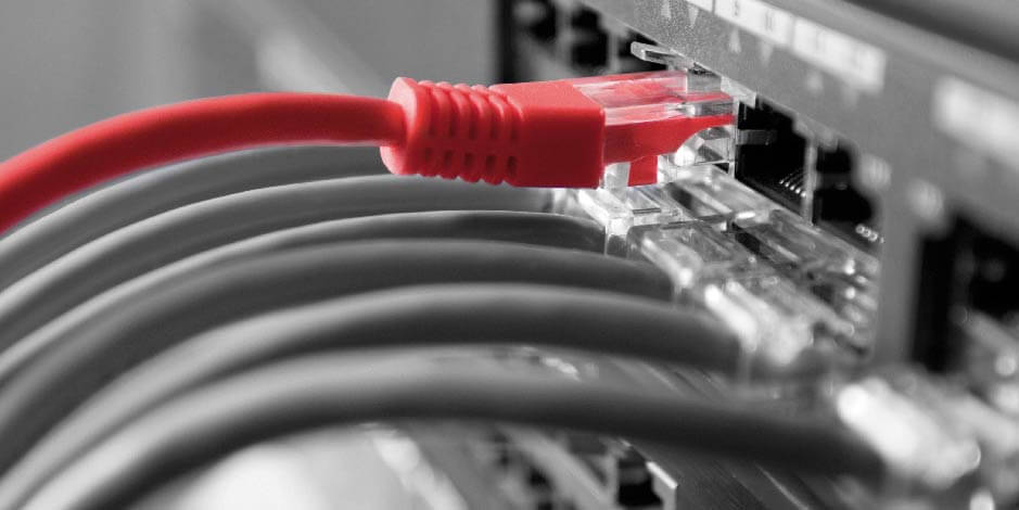 Network cable Atradius Collect@Net
